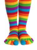 镶边的五颜六色的袜子 库存照片