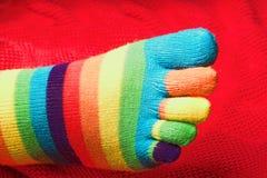 镶边的编织袜子 库存照片