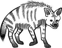 镶边的鬣狗 皇族释放例证