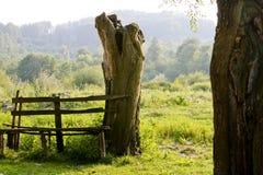 长凳乡下 库存图片