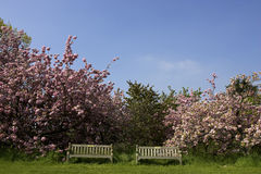 长凳倒空公园二 免版税库存照片