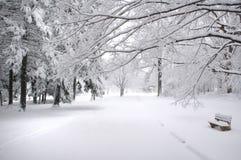 长凳公园冬天 库存图片