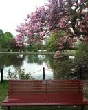长凳公园 免版税库存图片