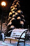 长凳冬天 库存图片