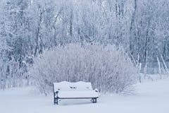 长凳包括雪 库存图片