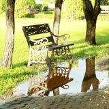 长凳反射在自然公园 图库摄影