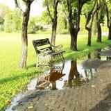 长凳反射在自然公园 免版税库存图片