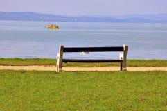 长凳和树 库存照片