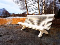 长凳和自然 库存照片
