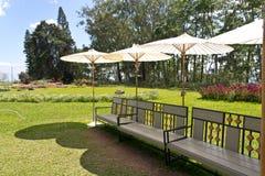 长凳和遮阳伞。 免版税库存照片