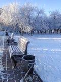 冻长凳在一个城市公园冬天 库存图片