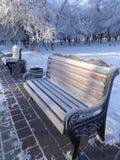 冻长凳在一个城市公园冬天 图库摄影