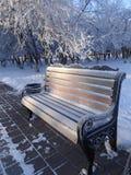 冻长凳在一个城市公园冬天 库存照片
