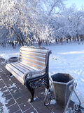 冻长凳在一个城市公园冬天 免版税库存图片