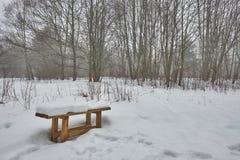 长凳在一个多雪的森林里 库存照片