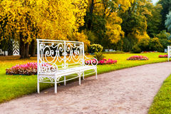 长凳在下降时间的公园 免版税库存照片