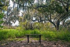 长凳在佛罗里达公园中部  免版税库存图片