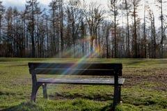 长凳在公园和彩虹 免版税库存照片