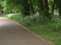 长凳在公园在伦敦 图库摄影