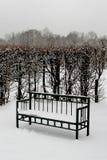 长凳在冬天公园 免版税图库摄影