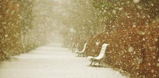长凳在冬天公园 免版税库存图片