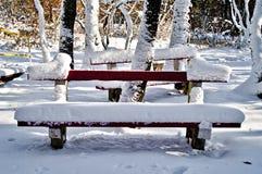 长凳在冬天森林里 免版税库存照片