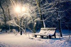 长凳在夜公园 库存图片
