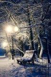 长凳在夜公园 免版税库存照片