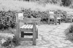 长凳在庭院公园 免版税库存照片