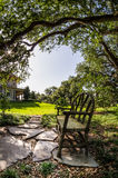 长凳在新奥尔良LA的树下 免版税库存图片