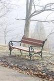 长凳在早晨薄雾的城市公园 库存照片