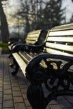 长凳在春天公园 库存图片