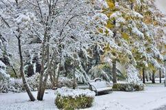 长凳在有第一积雪的秋天公园 免版税库存图片