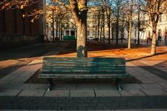 长凳在柏林 库存照片