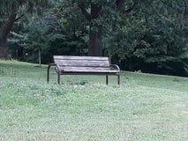 长凳在树附近坐空在公园 免版税库存图片