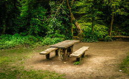 长凳在森林里 免版税库存图片