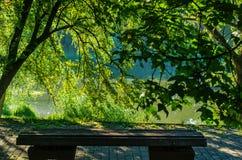 长凳在池塘的夏天公园 库存图片