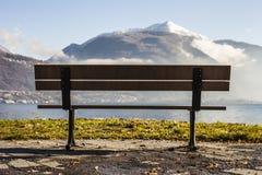 长凳在湖前面的树荫下 图库摄影