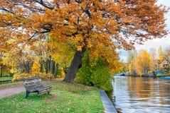 长凳在秋天公园 免版税图库摄影