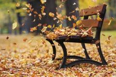 长凳在秋天公园 库存照片