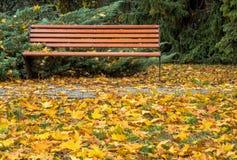长凳在秋天公园 免版税库存照片