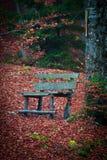 长凳在秋天森林里 免版税库存图片