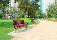 长凳在美丽的公园 免版税库存照片