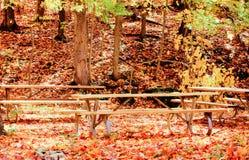 长凳在许多秋叶包围的公园 库存照片
