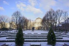 长凳在雪结构树都市冬天附近报道了横向 免版税库存图片