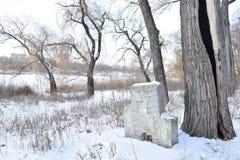 长凳在雪结构树都市冬天附近报道了横向 免版税图库摄影