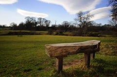 长凳在Erddig公园 图库摄影