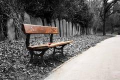 长凳墓地 免版税库存照片