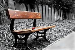 长凳墓地 免版税库存图片