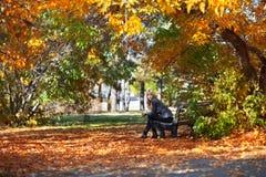 长凳女孩公园 免版税库存照片